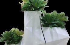 Giới thiệu chậu hoa composite cao cấp kiểu dáng đẹp