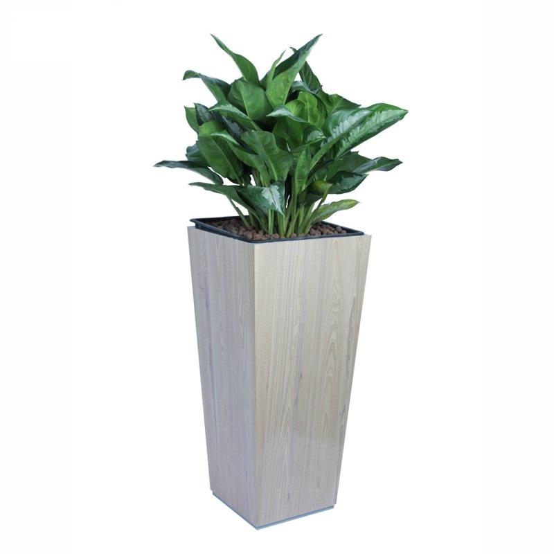 Chậu cây bằng nhựa composite đáy vuông